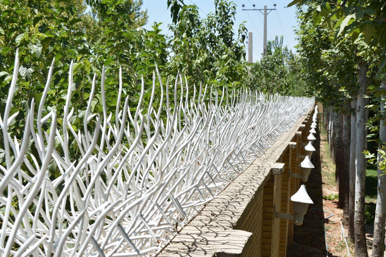 قیمت حفاظ شاخ گوزنی